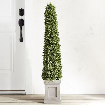 """Outdoor Faux Boxwood Cone 48"""" Topiary"""