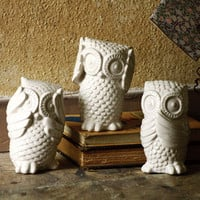 The Good Owls - Set of 3