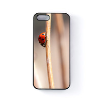 Lady Bug Black Hard Plastic Case for Apple iPhone 5 / 5s by Mick Agterberg