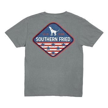 Youth American Patch Tee by Southern Fried Cotton