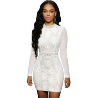 Lace Sexy Slim High Collar Neck Long Sleeve Package Hip Erotic One Piece Dress _ 11621