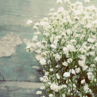 Flower photograph- babys breath, white, teal, rustic, romantic, country, bouquet, floral decor, botanical, fine art photo, summer, feminine