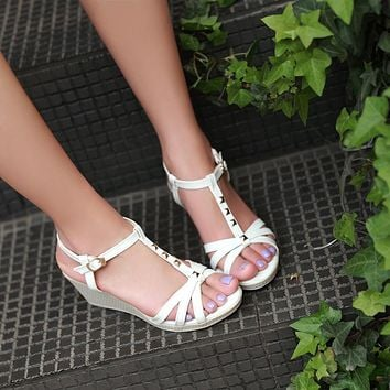 Fashion T Straps Studded Sandals Pumps Platform High Heels Women Dress Shoes 8097