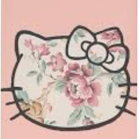 Hello Kitty Floral Case