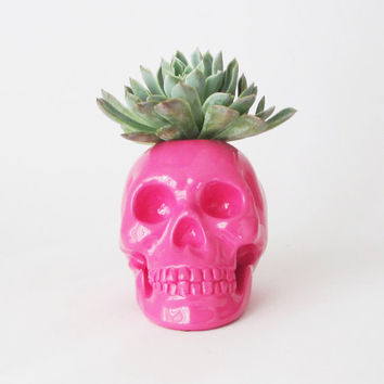 Skull, Plant Holder, Pink Skull, Skull Sculpture, Skull Decor, Skulls, Skull Housewares, Gift for Her, Human Skull, Sculpture Skull