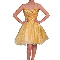 Beautifly Women's Golden Organza Sweetheart Embellished Dress