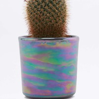 Oil Slick Planter - Urban Outfitters