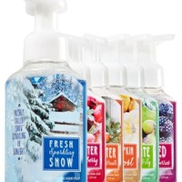 Gentle Foaming Hand Soap Bundle Winter's Wonder