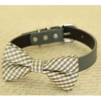 Champagne dog bow tie attached to collar, Pet wedding accessory , Wedding dog collar