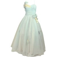 1950's Baby Blue Tulle Gown