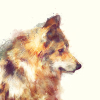 Wolf // True Stretched Canvas by Amy Hamilton