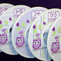 6 Custom Baby Closet Dividers Organizers Purple and Lavender Owls Baby Girl Nursery Shower Gift - Clothes Dividers