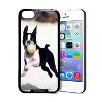 Shawnex Boston Terrier Puppy Cute Boston Terrier iPhone 5C Case - Thin Shell Plastic Protective Case iPhone 5C Case