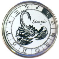 Scorpio Scorpion In Zodiac Sign Horoscope Symbol 18MM - 20MM Charm for Snap Jewelry