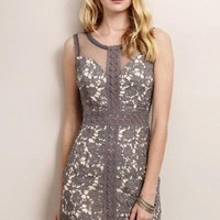 Sweet Spirit French Grey Lace Dress