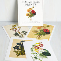 Vintage Inspired Seed What I Mean? Print Set by ModCloth