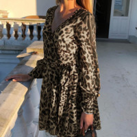 New women's autumn and winter long-sleeved short dress leopard female temperament commute