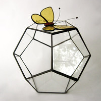 Geometric glass terrarium & yellow butterfly /Dodecahedron /Succulent terrarium/Geometric glass planter/terrarium container