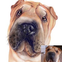 Hand Drawn Colour Pet Caricature - Personalised Gift - Caricature From Your Photo's - Digitally Delivered
