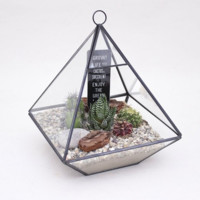 Geometric Drop Terrarium