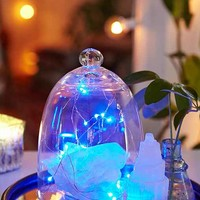 Light Blue Firefly Battery Powered String Lights- Blue One
