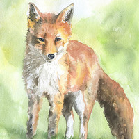 Red Fox Watercolor Painting Fine Art Print 5 x 7